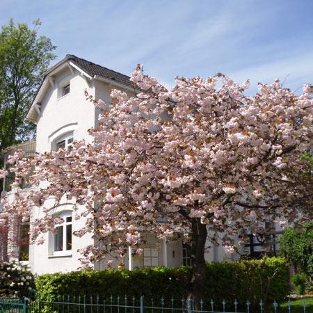 BGH Haus in der Beisserstraße 23 in Hamburg